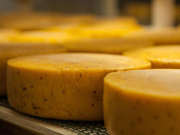 Нижегородские сыровары нацелились на китайский рынок