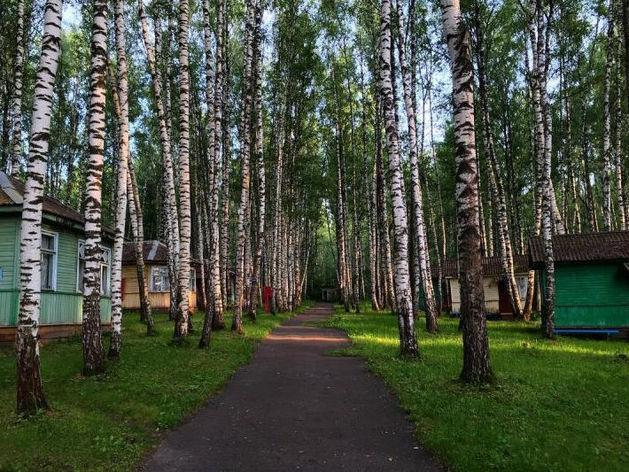 В Нижегородской области продается база отдыха за 20 млн руб.