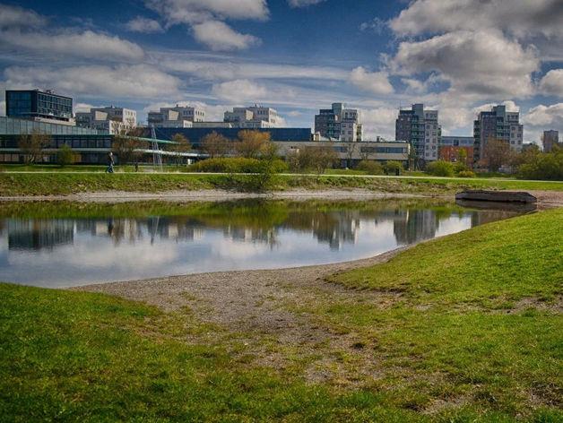 «Общественное пространство - это площадка-трансформер». Нижегородцы – о городской среде