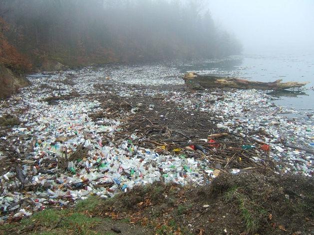 Ближе к концу. Нижегородской области указали место в экологическом рейтинге городов России