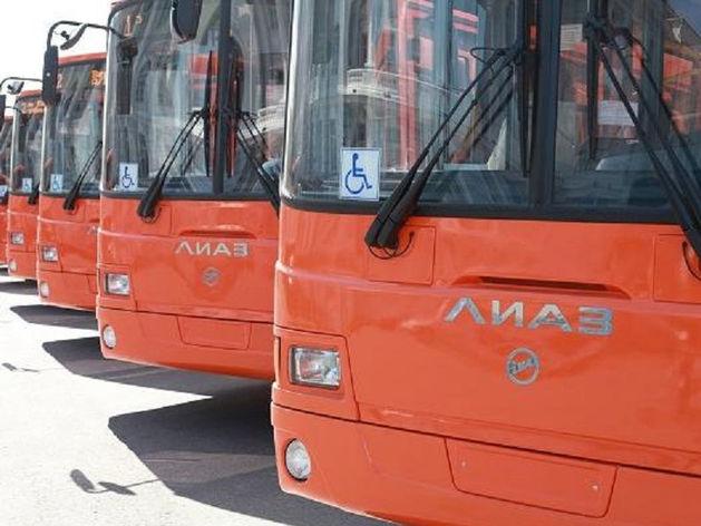 Нижегородские власти купили автобусы на 1,1 млрд руб. ФАС выявила нарушения в сделке