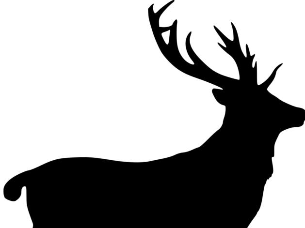 Охота пуще неволи. 400 тыс. руб. заплатит браконьер за убийство лося