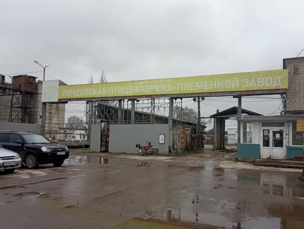 Суд обязал Линдовскую птицефабрику выплатить штраф за нарушение экологических норм