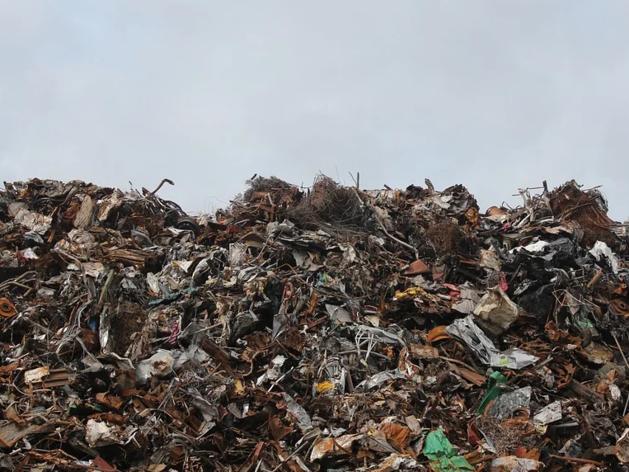 Названа стоимость проекта ликвидации свалки около «Игумново» в Дзержинске